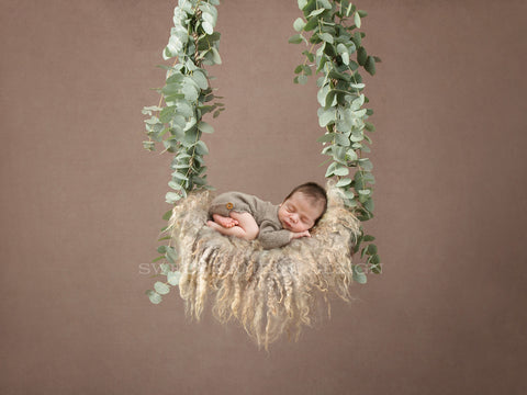 Newborn Digital Backdrop - natural swing made with Fresh Eucalyptus Leaves
