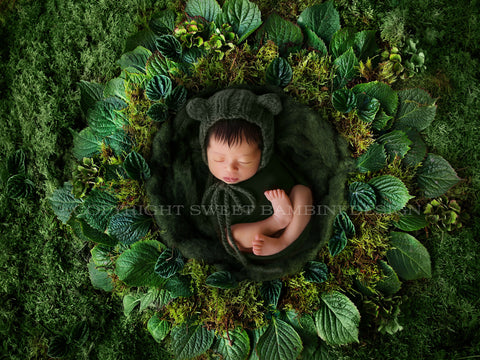 Newborn digital backdrop - Beautiful green nest made from fresh leaves and foliage against a fresh mossy background