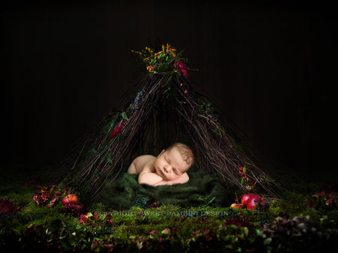 Newborn digital backdrop - Beautiful TeePee made from fresh willow, with fresh apples