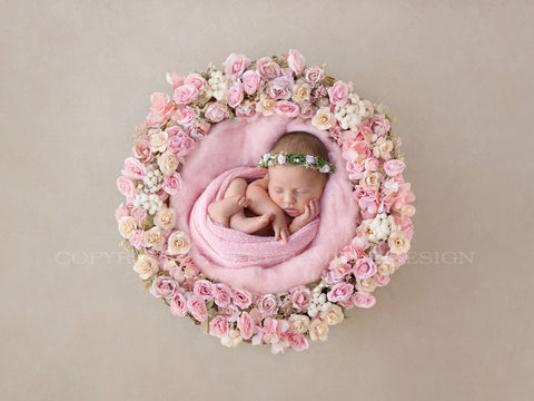 Newborn Digital Background - Evie Pink Rose Flower Bowl on Cream