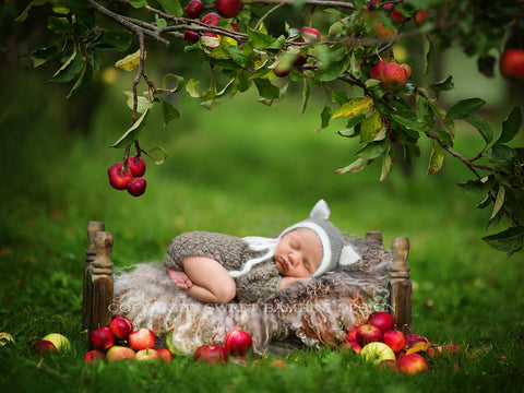 "Newborn Digital Backdrop for boys and girls - ""Under the apple tree"" ."