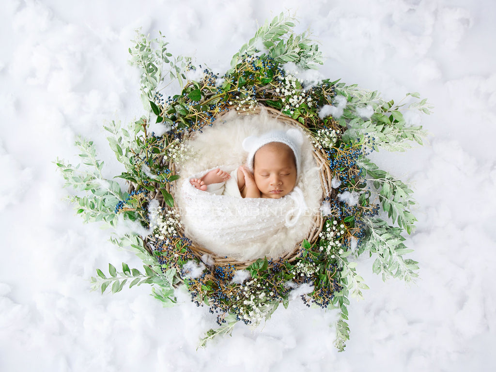 Christmas Digital Backdrop -  Newborn nest with fresh berries