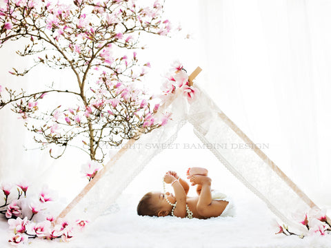 Sitter Digital Backdrop for babies and sitters - under the Magnolia Tree