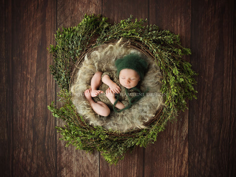 Newborn Digital Backdrop - Natural Nest with Fresh Leaves