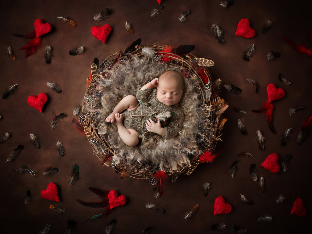 Newborn Digital Background for boys or girls - Natural nest with real feathers, on chocolate background with red hearts
