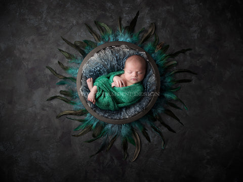 Newborn Digital Background - Dark grey bowl with turquoise feathers on charcoal background