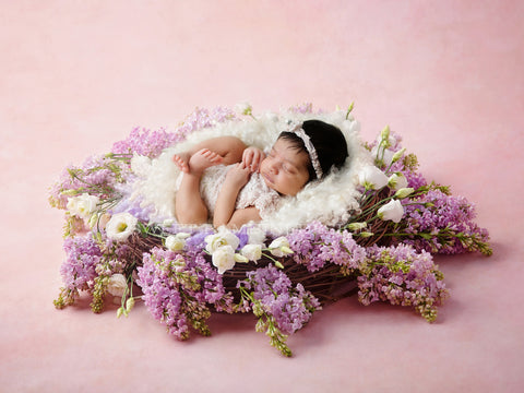 Newborn Digital Backdrop - Lilac dream side lit fresh flower nest