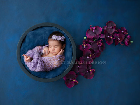 Unisex Newborn Digital Background  - Blue nest, with mulberry/purple/very dark pink orchids