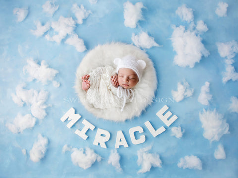 Newborn Digital Background Miracle baby, White Fluffy Nest, clouds, rainbow baby