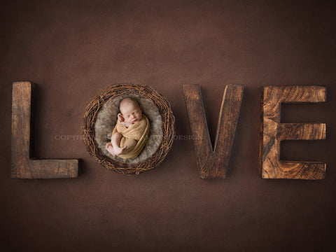Newborn Photography Digital Backdrop for boys or girls - Rustic Love
