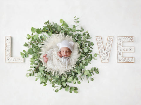 Newborn Photography Digital Backdrop for boys or girls - Simple White Love/White nest