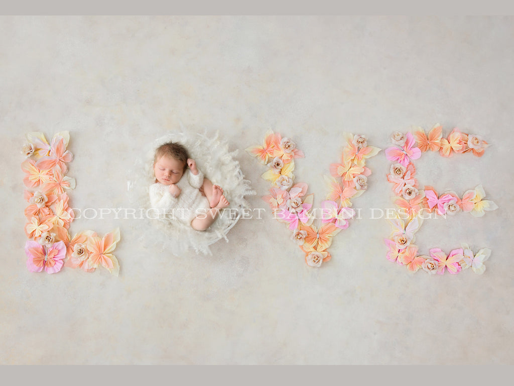 Newborn Photography Digital Backdrop for boys or girls - Spring Butterfly Love