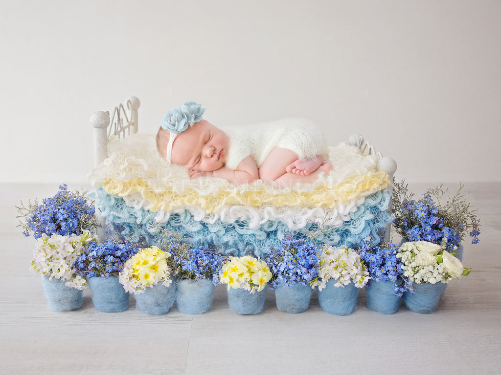 Newborn Digital Backdrop - Forget-me-not & wild flower bed