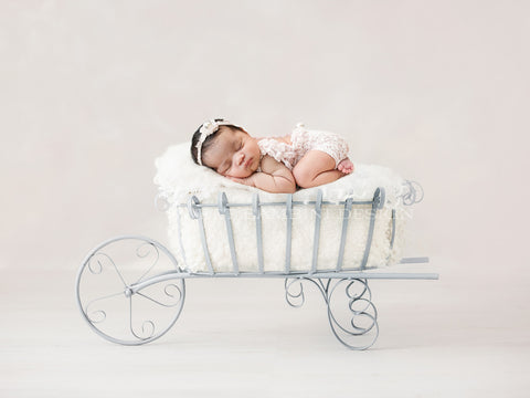 Newborn Photography Digital Backdrop for girls or boys - Simple vintage wheelbarrow.