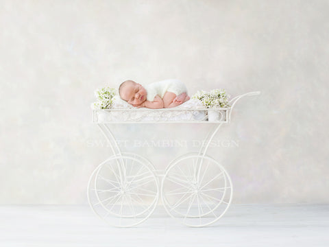 Newborn Photography Digital Backdrop for girls - Newborn Photography Digital Backdrop for girls - Lovely ornamental carriage, with fresh white flowers