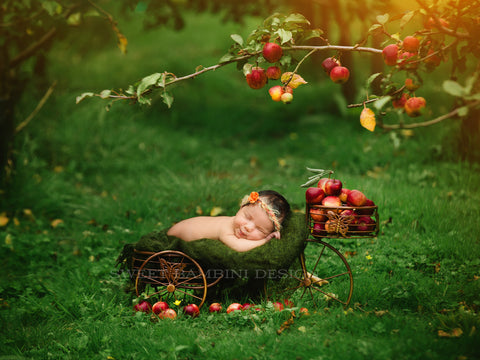 Newborn Photography Digital Backdrop for girls or boys - Vintage cycle under the apple trees