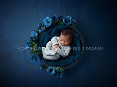 Newborn Digital Backdrop boy special - Black Bowl with Blue Fluff on Navy Blue Background with Blue Flowers
