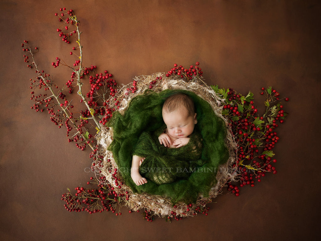 Newborn Photography Digital Backdrop for boys or girls - Natural nest with fresh red berries, fall backdrop