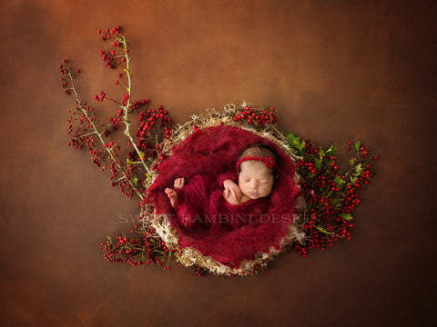 Newborn Photography Digital Backdrop for boys or girls - Natural nest with fresh red berries, shot on a rich chocolate brown background