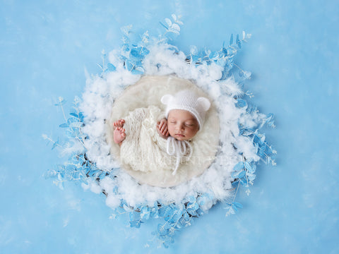 Christmas Digital Backdrop newborn - Frosted Blue Eucalyptus nest, shot on a baby blue hand painted background