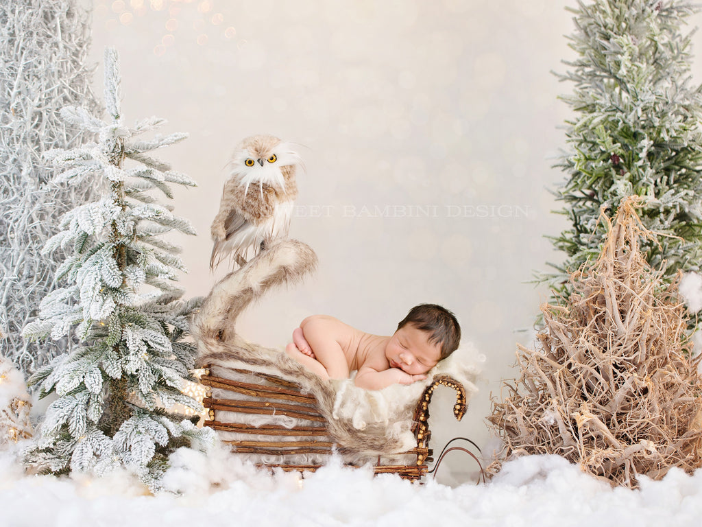 Christmas digital backdrop for newborns - Lovely woodland scene with little sled & owl