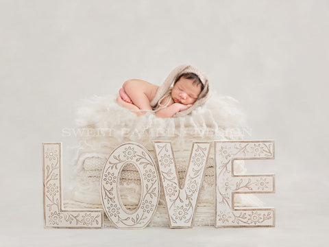 "Newborn Digital Backdrop - Neutral ""Love"" bed, Unisex"