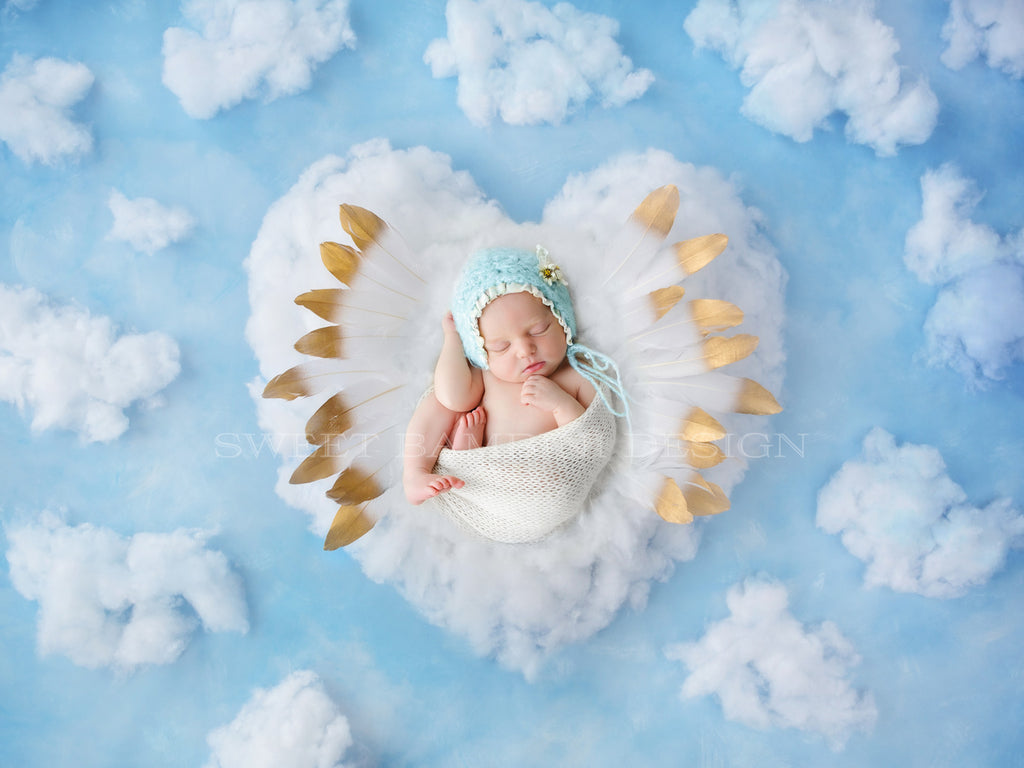 Newborn Digital Backdrop - White Fluffy Heart with White Feathers shot on a Blue Background with fluffy clouds