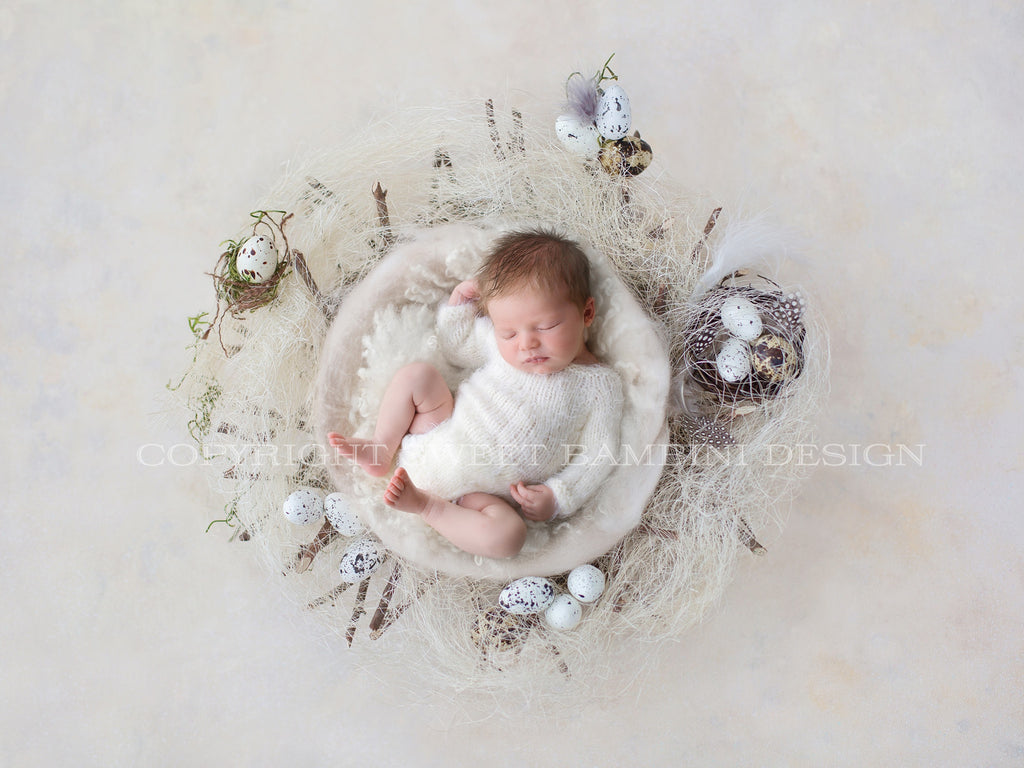 Easter Digital Backdrop for newborns - Natural nest with little eggs and a white middle
