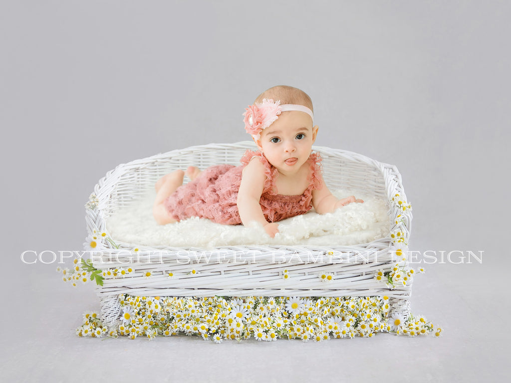 Digital Backdrop - Sitter - Beautiful White Wicker couch with Fresh Daisies