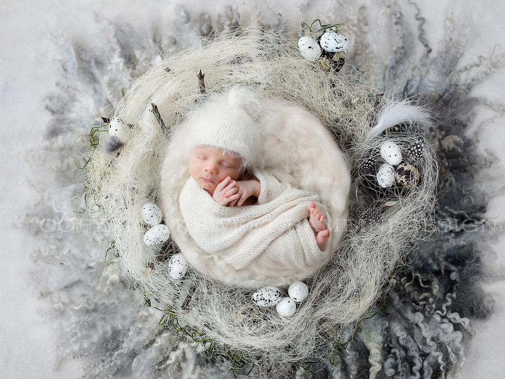 Easter Digital Backdrop for newborn girls or boys - Natural grey nest with little eggs shot on a rich textured grey background