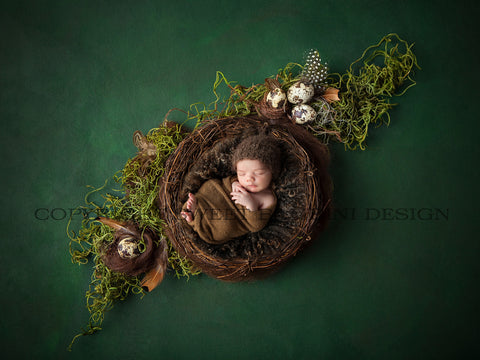 Easter Digital Backdrop for newborn girls or boys - Natural nest with little eggs and green moss, shot on a rich textured green background