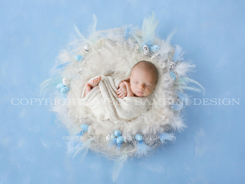 Newborn Easter Digital Backdrop - Natural nest with little eggs, feathers and a off fluffy middle