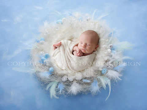 Easter Digital Backdrop for newborns - Natural nest with little eggs and a white middle shot from the side on a blue background