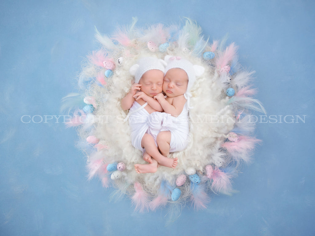 Newborn Digital Backdrop  - Natural nest with little eggs, pink & blue feathers, Easter digital