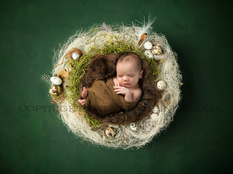 Easter Digital Backdrop for newborns - Natural nest with little eggs and a brown middle shot on a rich green background