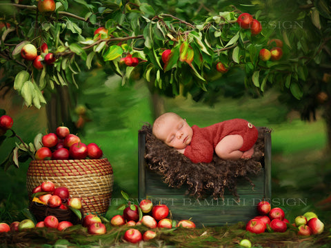 "Painted Newborn Digital Backdrop for boys and girls  ""Under the apple tree"" ."