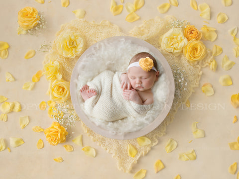 Newborn Digital Backdrop - White bowl with yellow roses and yellow heart with gypsophila