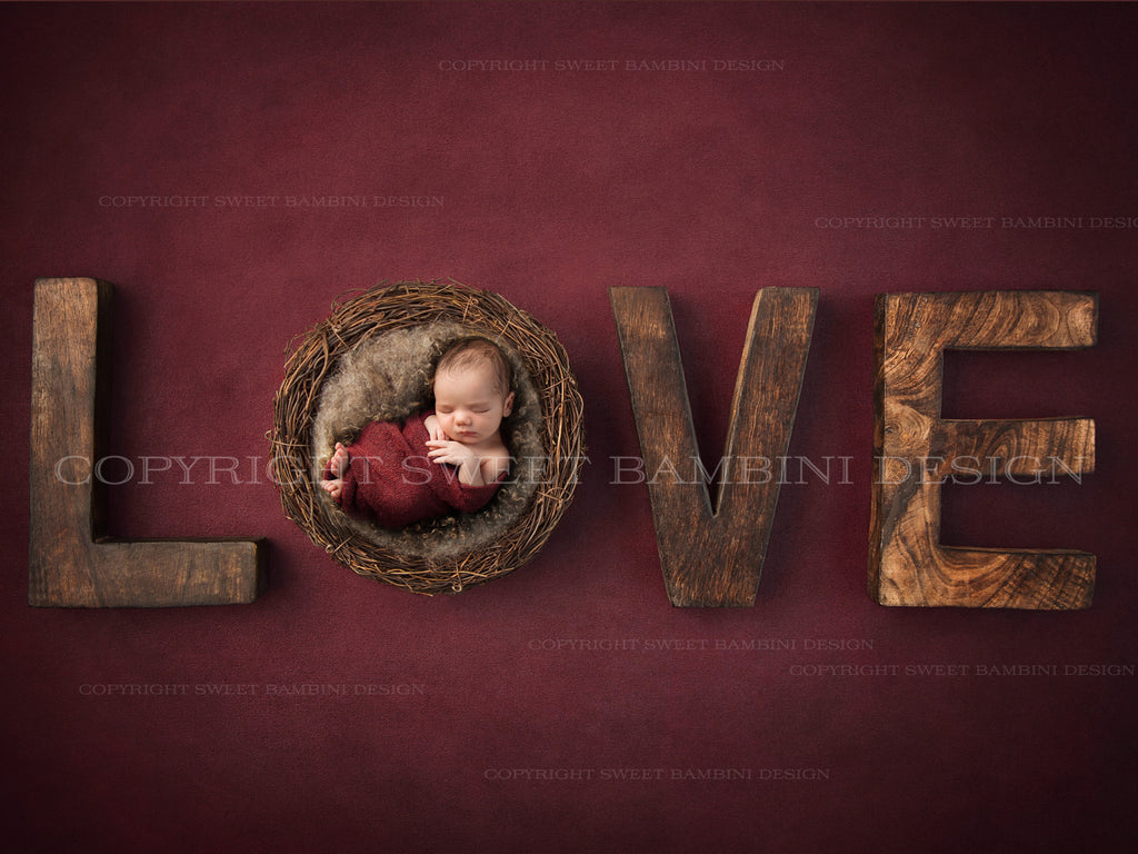 Newborn Digital Backdrop for boys or girls - Rustic Love in Cranberry