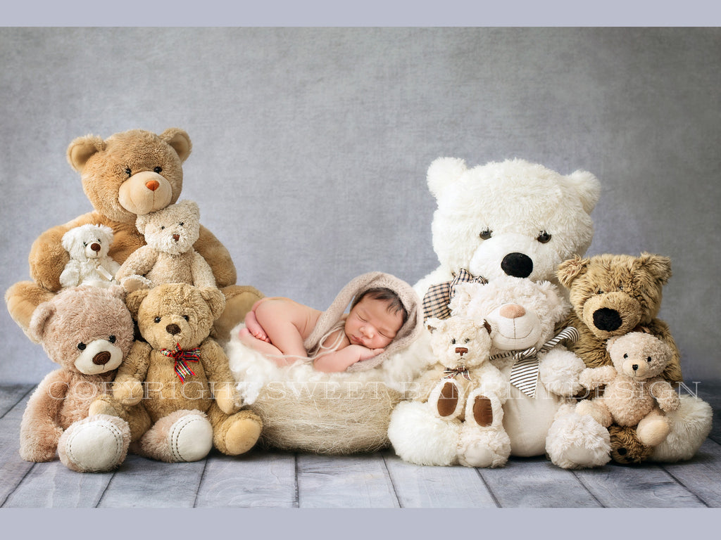 Newborn Digital Backdrop - Teddy Bears