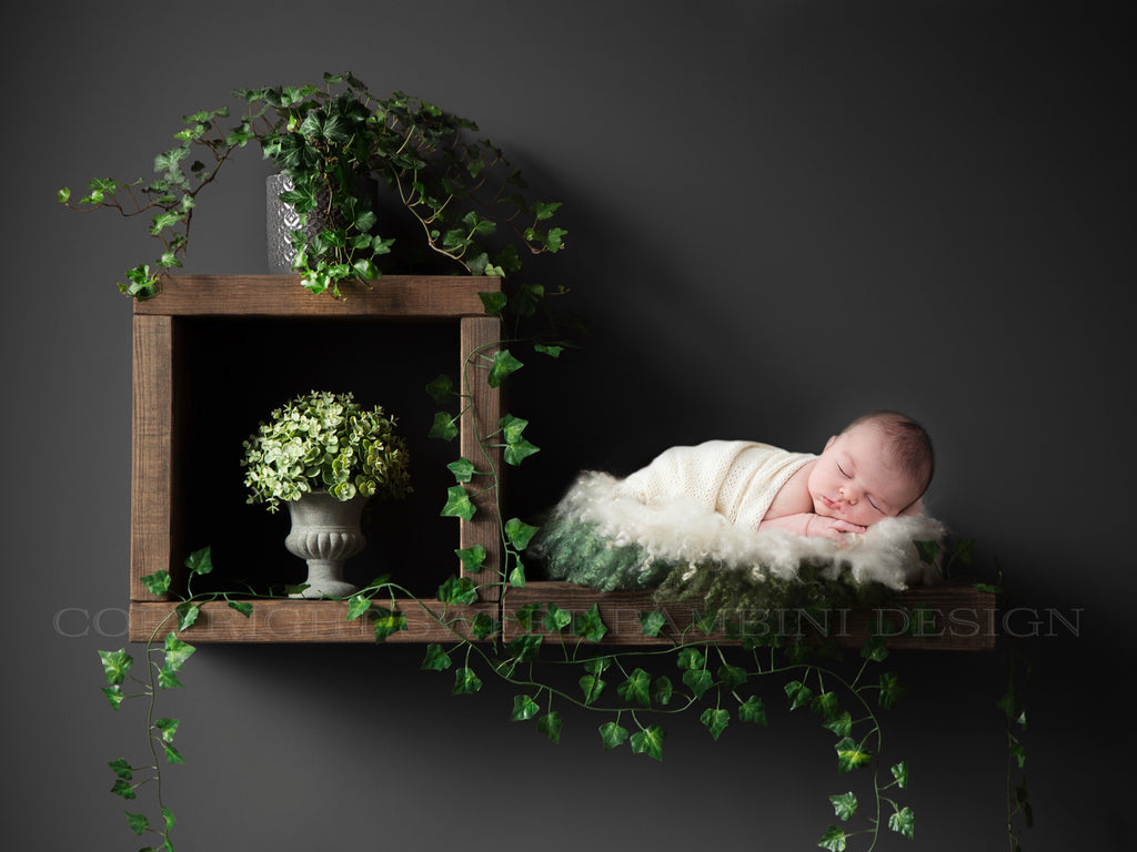 Newborn Digital Backdrop - Rustic wooden shelves with ivy, shelf digital