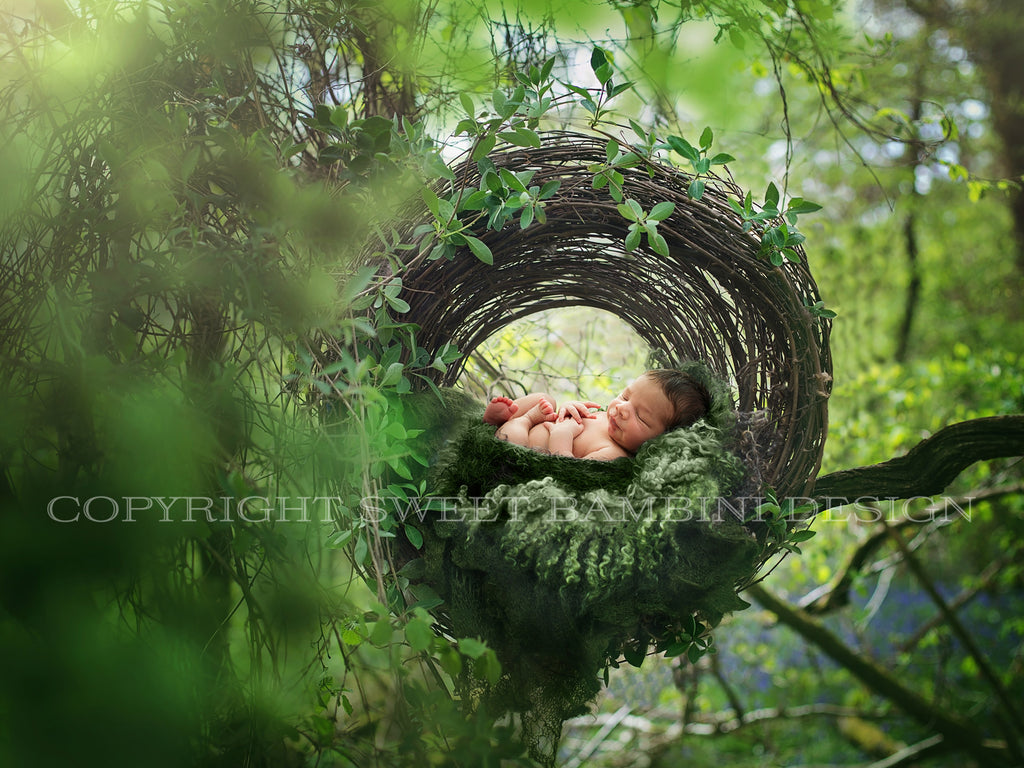 Newborn Digital Backdrop - Rustic nest set up in the treetops