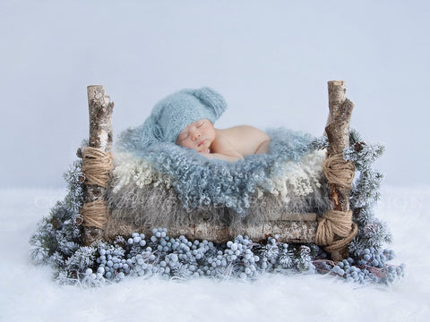 Newborn Photography Digital Backdrop - Little bed surrounded by frosty berries and pines