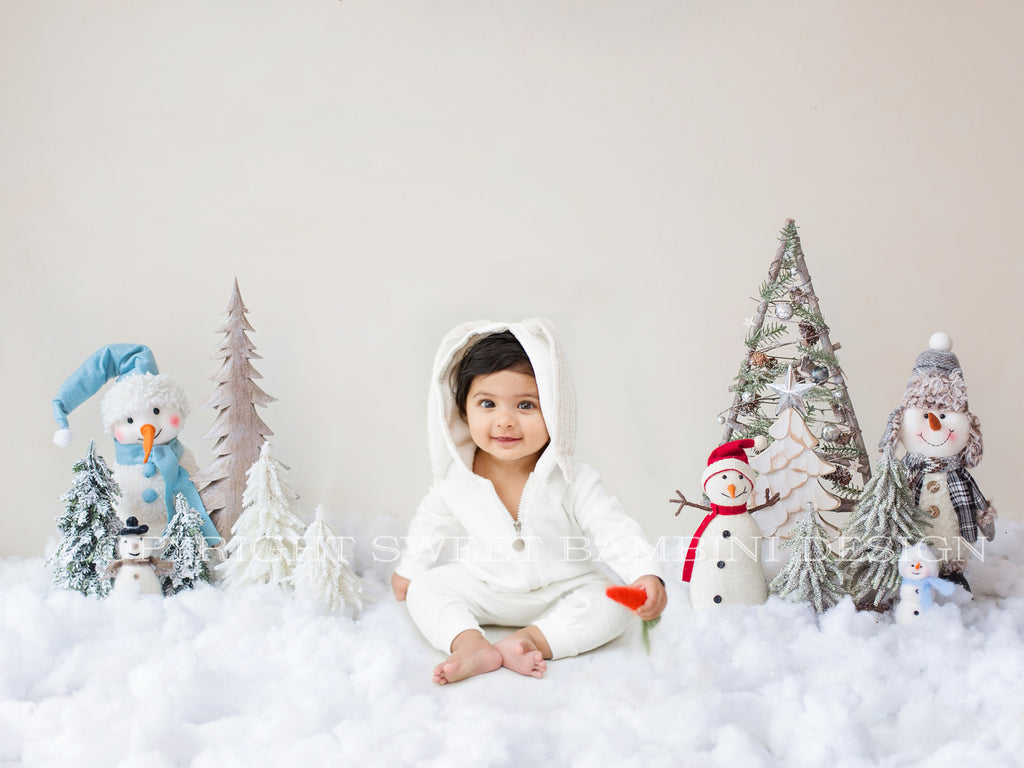 Sitter Christmas Digital Backdrop - Winter Wonderland