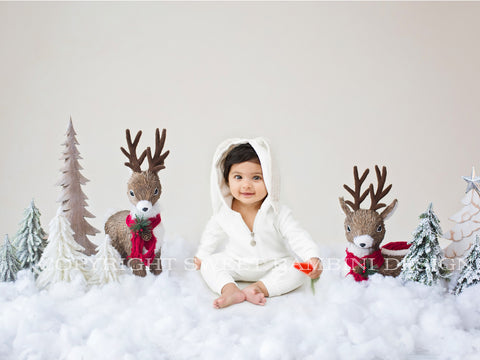 Sitter Christmas Digital Backdrop - Snowy Reindeer