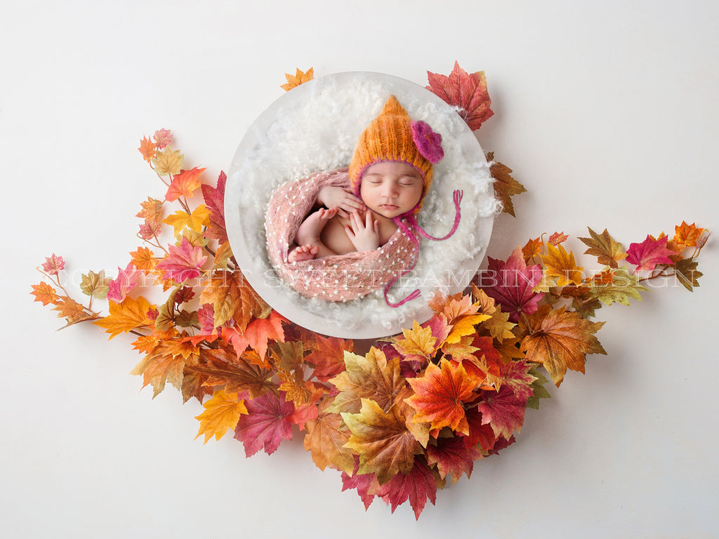 Newborn Digital Backdrop - White bowl set amongst gorgeous autumn leaves