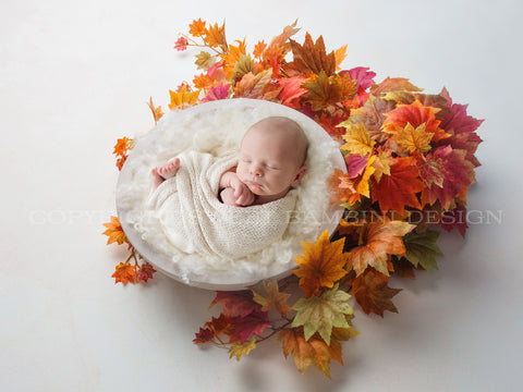 Autumn Newborn Digital Backdrop all - White bowl , autumn leaves, autumn wreath, autumn digital