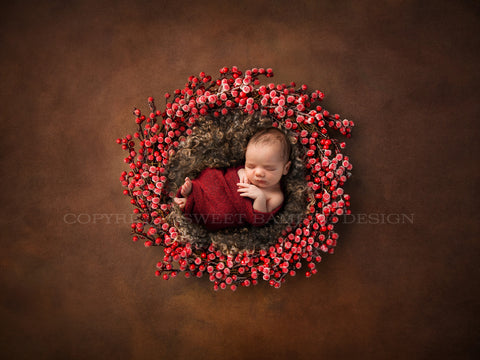 Newborn Digital Backdrop - Frosted Red Berry Nest