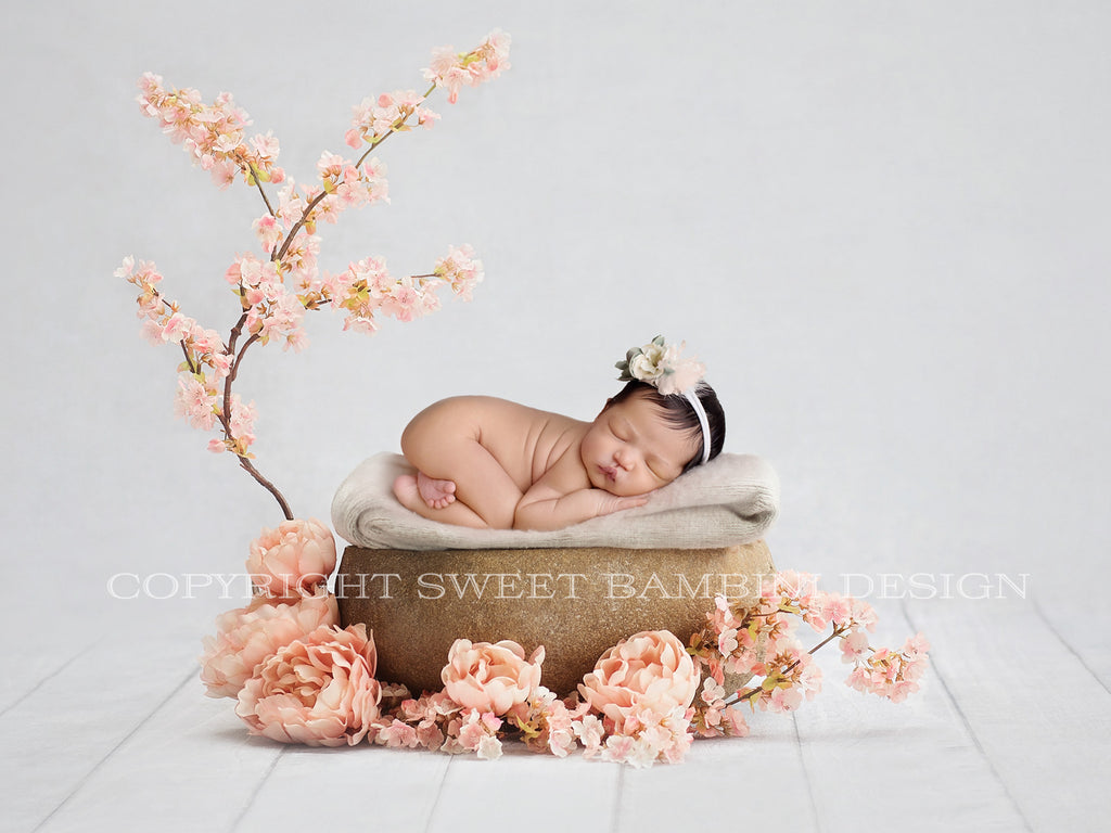 Newborn Digital Backdrop- Natural stone bowl with peach peonies and blossom