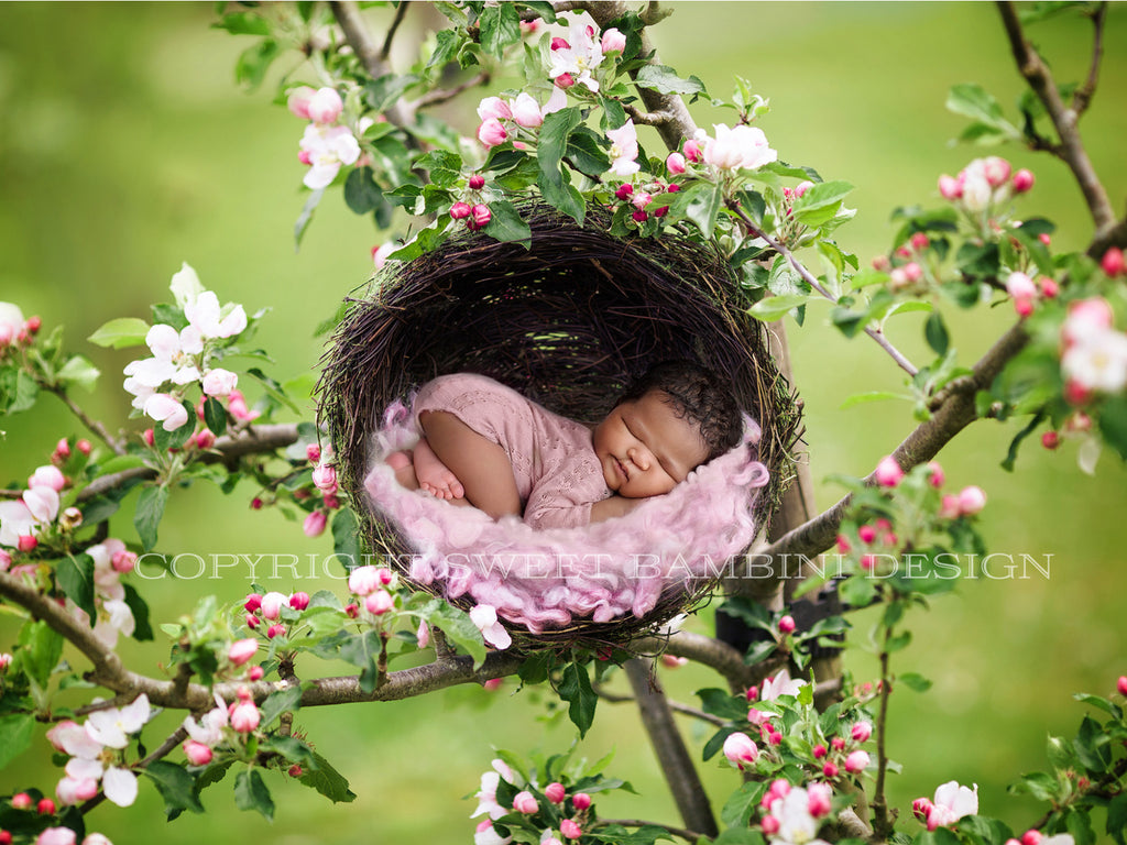 Apple blossom newborn Digital Backdrop - Natural nest in a pink flowering apple tree