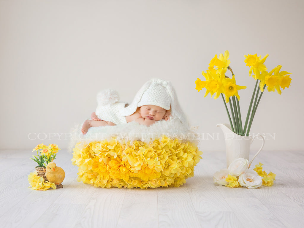 Newborn Digital Backdrop - Easter Nest 2